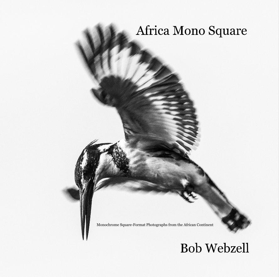 View Africa Mono Square by Bob Webzell