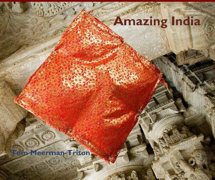 Bekijk Amazing India Tom Meerman-Triton op Tom Meerman-Triton