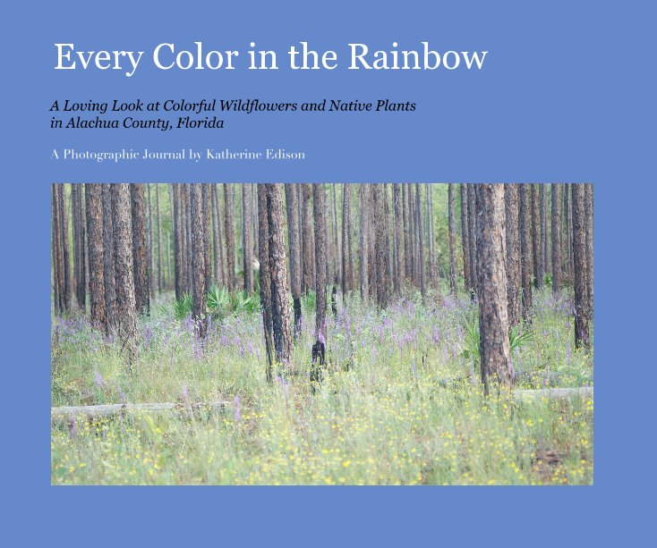 View Every Color in the Rainbow by Katherine Edison