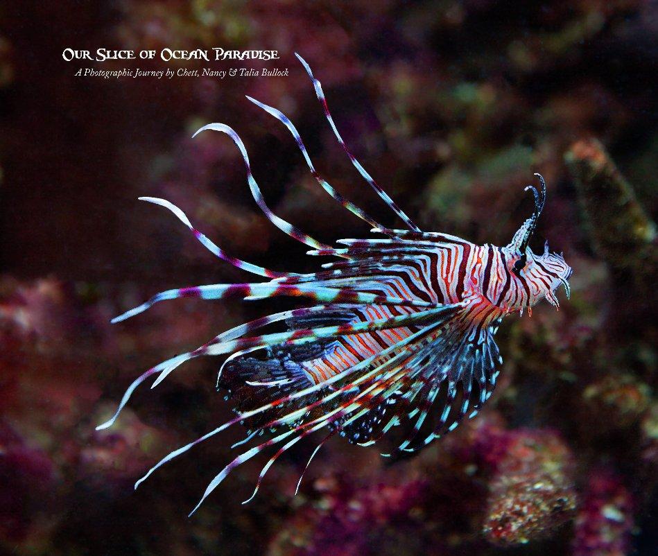 View Our Slice of Ocean Paradise by Chett Bullock