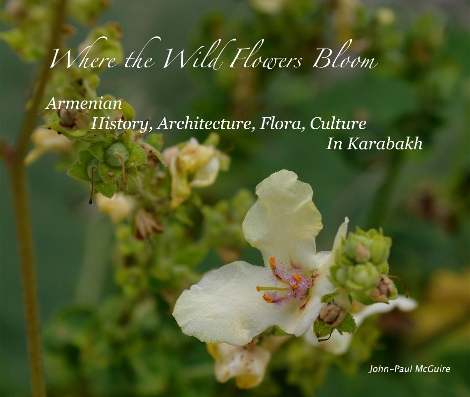 View Where the Wild Flowers Bloom Armenian History, Architecture, Flora, Culture In Karabakh by John-Paul McGuire
