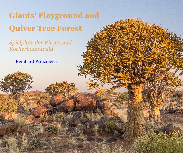 View Giants' Playground and Quiver Tree Forest by Reinhard Prinzmeier