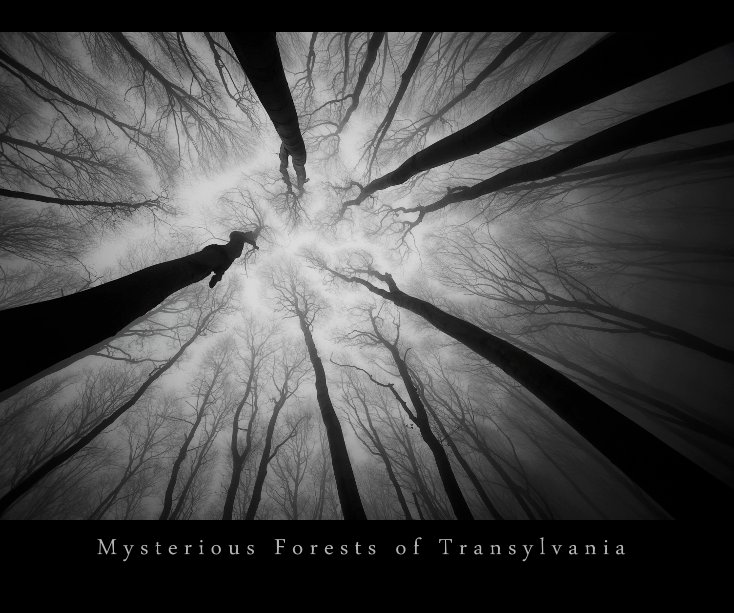 View Mysterious Forests of Transylvania by Andrei Cosma, Sergiu Cosma