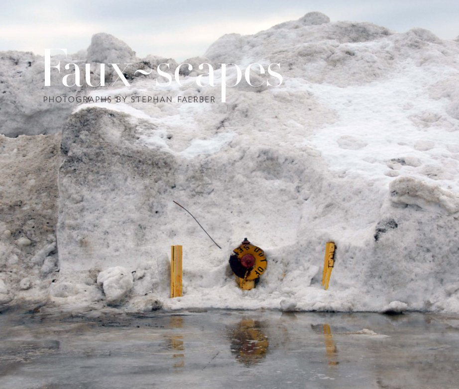 View Faux-Scapes Second Edition by Stephan Faerber