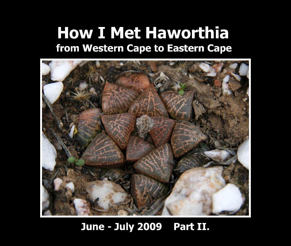 View How I Met Haworthia II. by Jakub Jilemicky