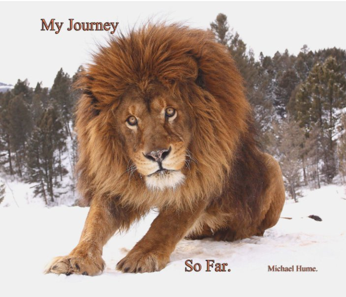 View My Journey   So Far by Michael Hume