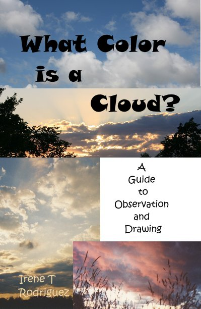 View What Color is a Cloud? by Irene T Rodriguez