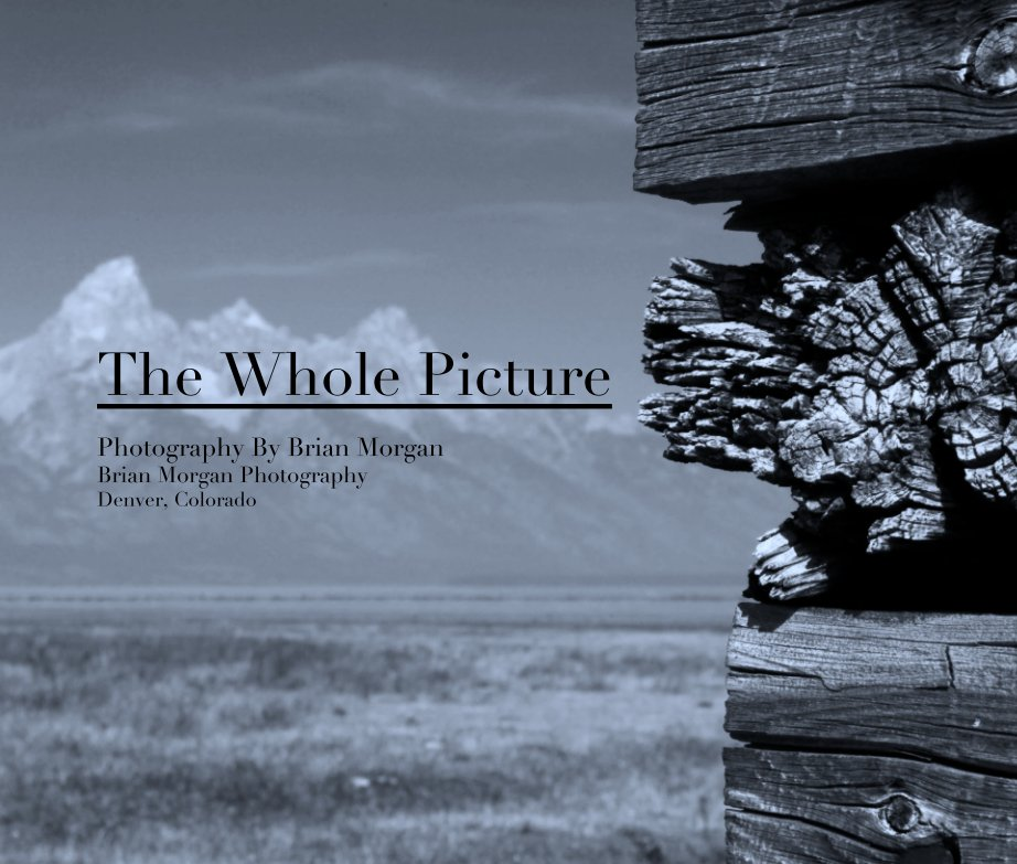 View The Whole Picture Photography  Photography Denver, Colorado by Brian Morgan