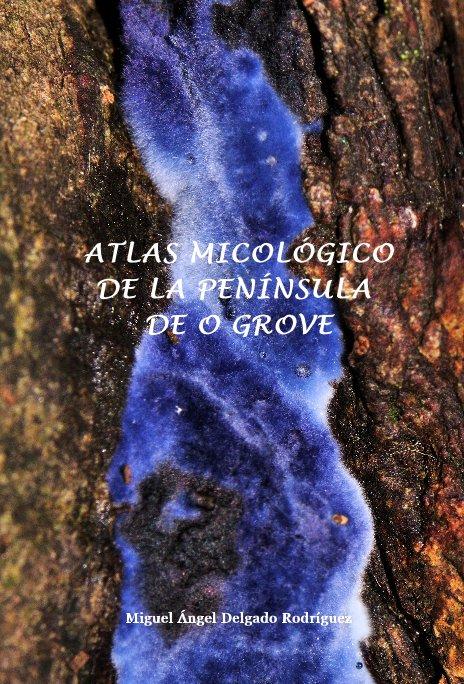 Ver ATLAS MICOLÓGICO DE LA PENÍNSULA DE O GROVE por Miguel Angel Delgado Rodriguez