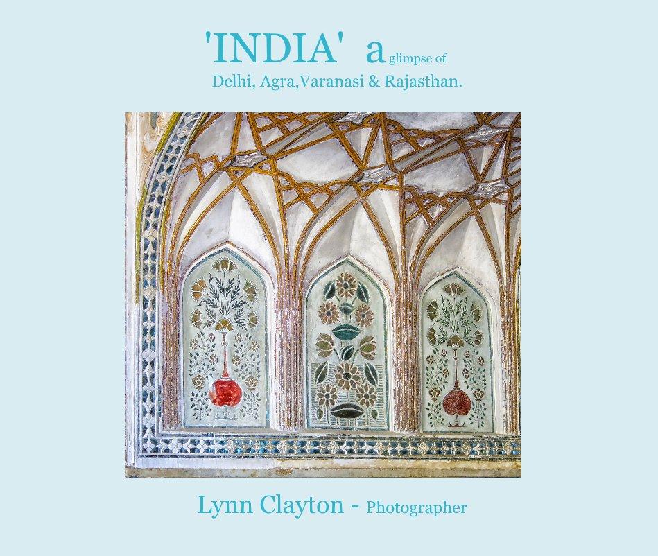 View 'INDIA' a glimpse of Delhi, Agra,Varanasi & Rajasthan. by Lynn Clayton - Photographer