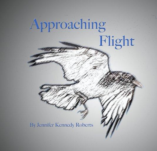 View Approaching Flight by Jennifer Kennedy Roberts