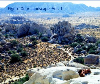 Figure On A Landscape~Vol. 1 book cover
