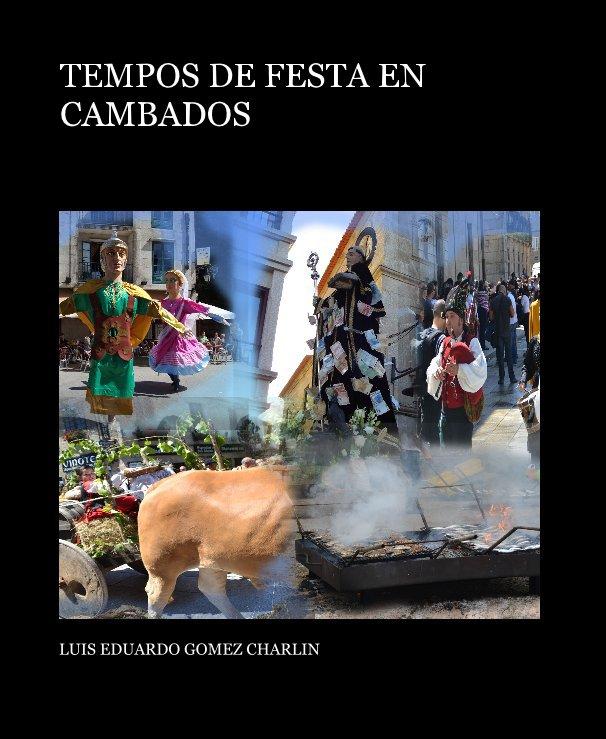 Ver TEMPOS DE FESTA EN CAMBADOS por LUIS EDUARDO GOMEZ CHARLIN