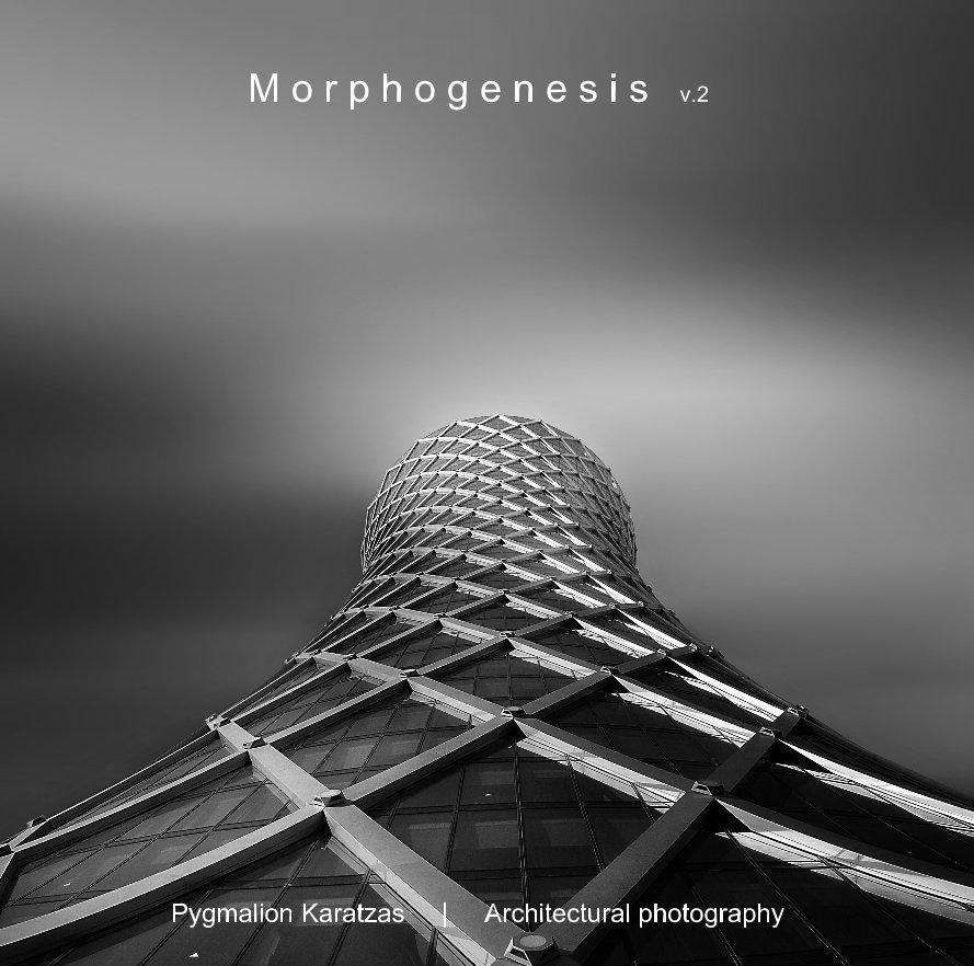 View Morphogenesis v.2 by Pygmalion Karatzas