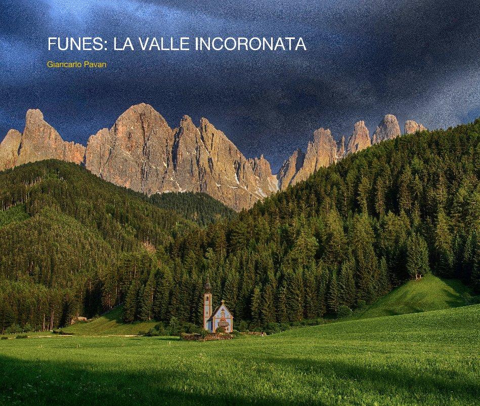 Visualizza FUNES: LA VALLE INCORONATA di Giancarlo Pavan