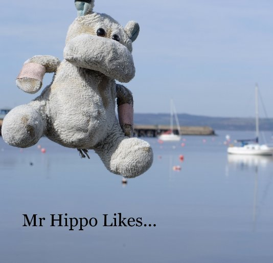 Mr Hippo Likes by Dom Bower   Blurb Books Canada