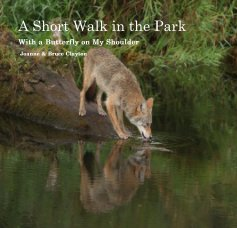 A Short Walk in the Park (child's book) book cover