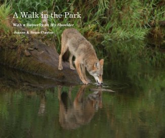 A Walk in the Park  (ImageWrap version) book cover