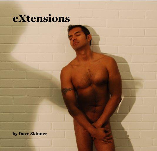 Bekijk eXtensions op Dave Skinner
