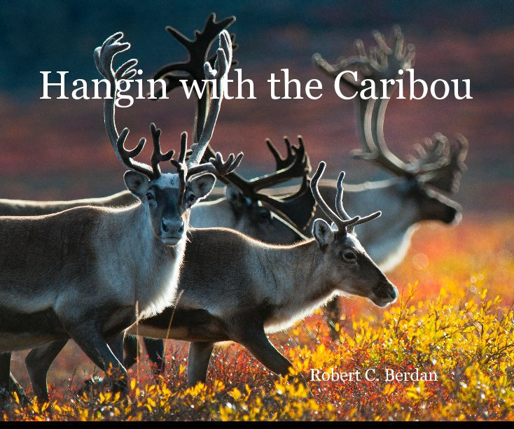 View Hangin with the Caribou by Robert C. Berdan