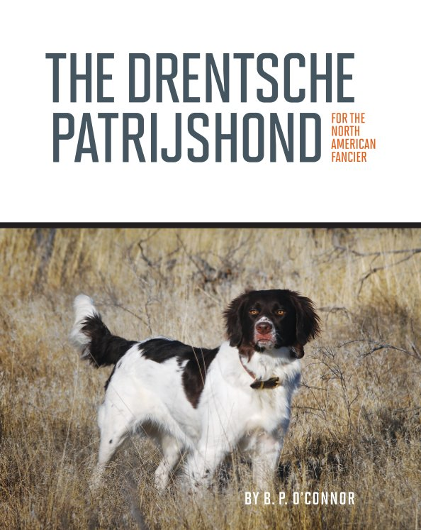 View The Drentsche Patrijshond for the North American Fancier by B. P. O'Connor