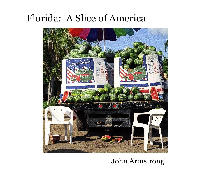 View Florida: A Slice of America by John Armstrong