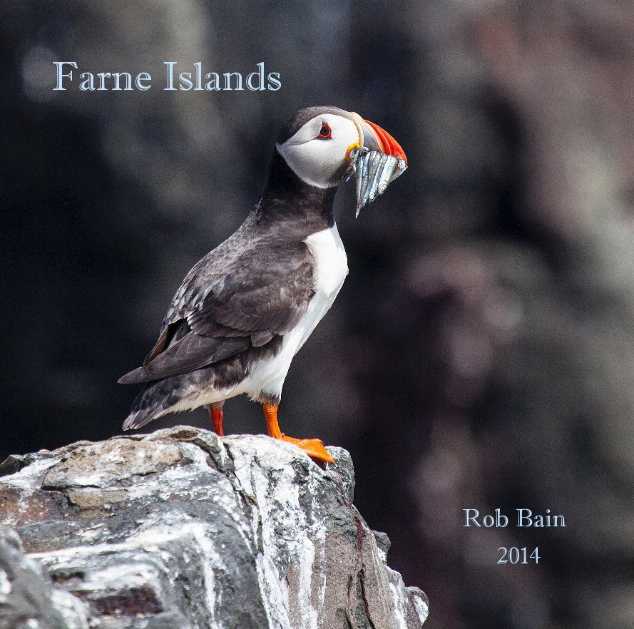 View Farne Islands by 2014