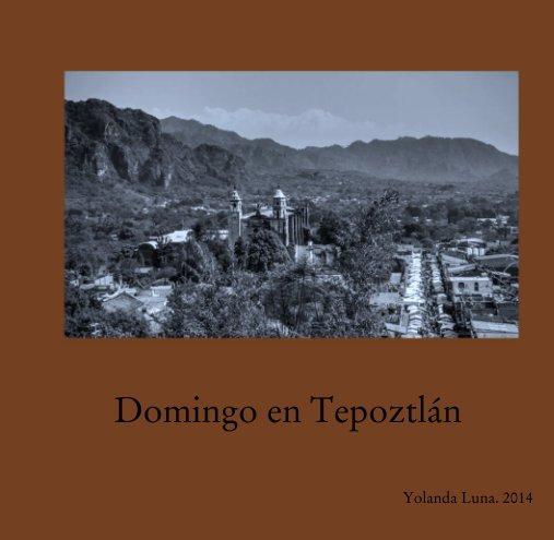 View Domingo en Tepoztlán by Yolanda Luna. 2014