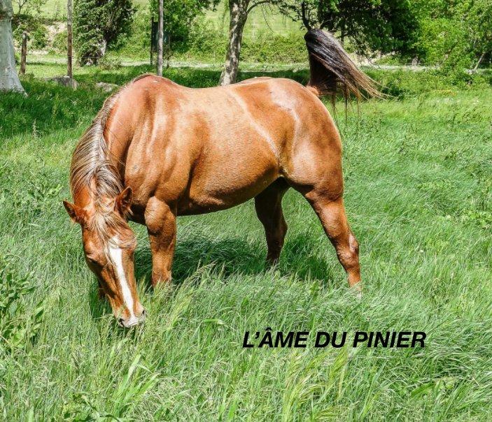 View L'Âme du Pinier by Marc Kaczmarek