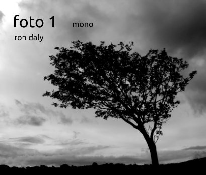 foto 1 book cover