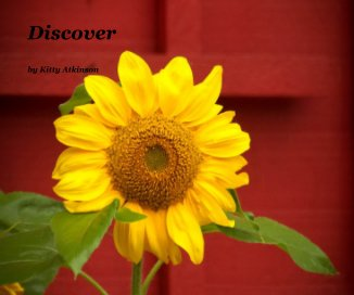 Discover book cover