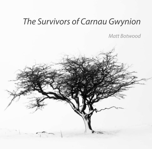 View The Survivors of Carnau Gwynion by Matt Botwood