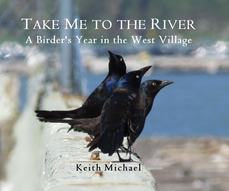 View TAKE ME TO THE RIVER A Birder's Year in the West Village by K e i t h M i c h a e l