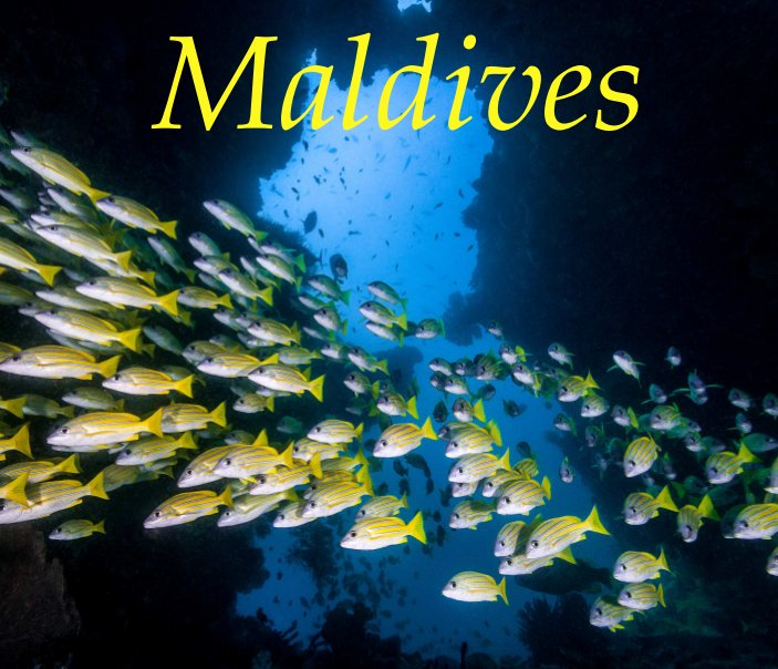 View Maldives by Mark Etter