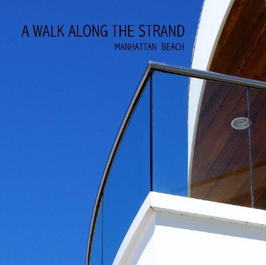 View A WALK ALONG THE STRAND by David Allen Ibsen