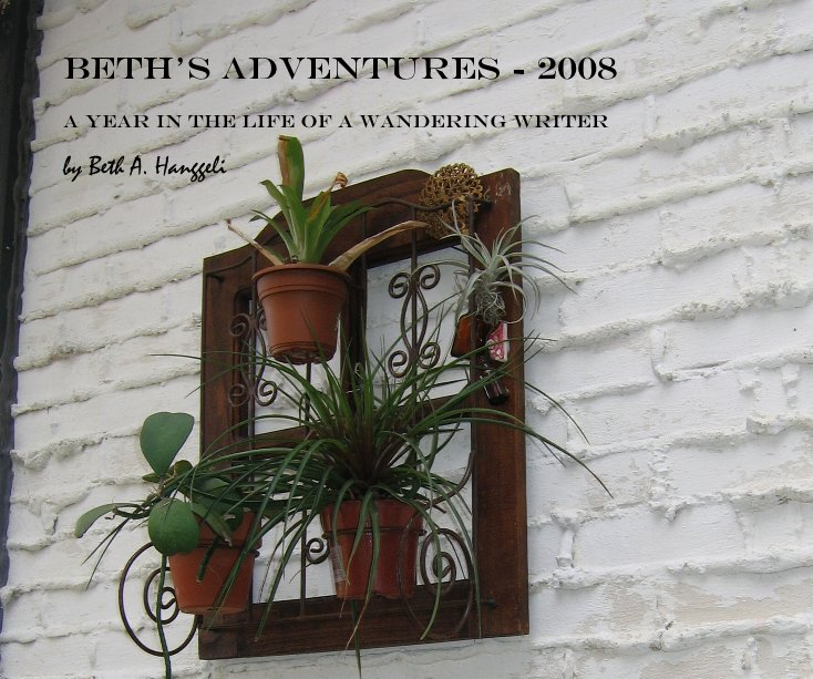 View Beth's Adventures - 2008 by Beth A. Hanggeli
