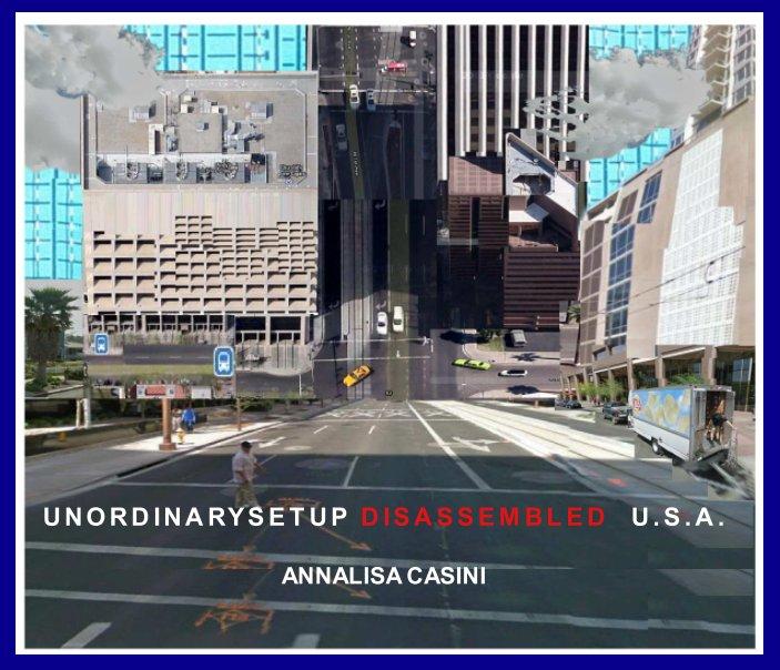 Visualizza Unordinarysetup Disassembled USA di Annalisa Casini