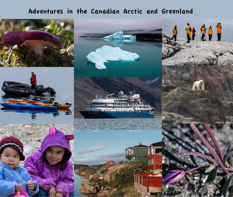 View Adventures in the Canadian Arctic and Greenland by Marylou Badeaux