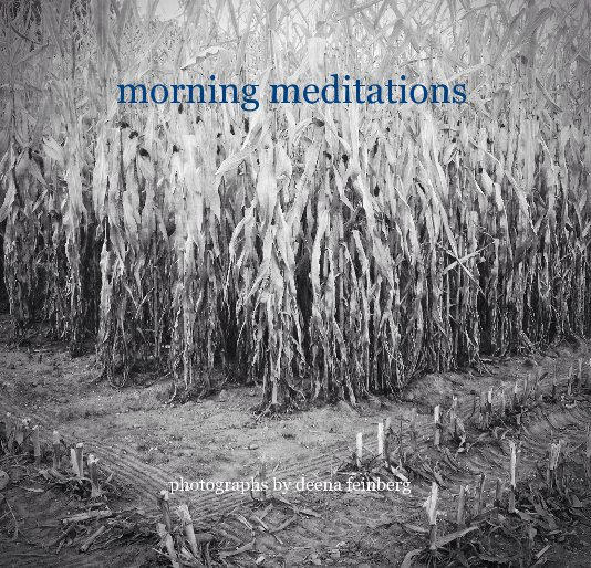 View morning meditations by deena feinberg
