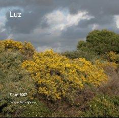 Luz book cover