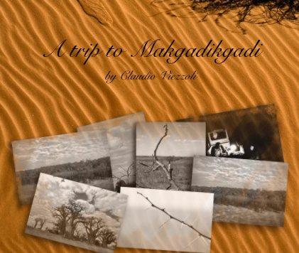 A trip to Makgadikgadi