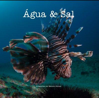 Água e Sal book cover