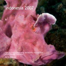 Indonesia 2007 book cover