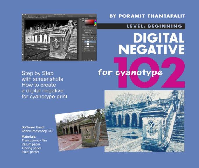 View Digital Negative for Cyanotype 102 by Poramit Thantapalit