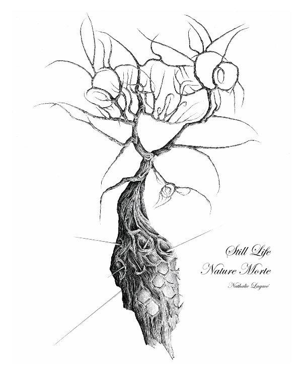 View Still Life Nature Morte by Nathalie Lagacé
