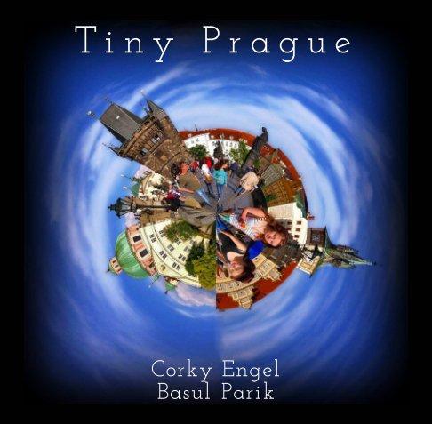 View Tiny Prague by Corky Engel, Basul Parik