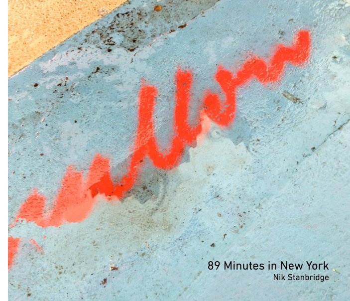 View 89 Minutes In New York by Nik Stanbridge