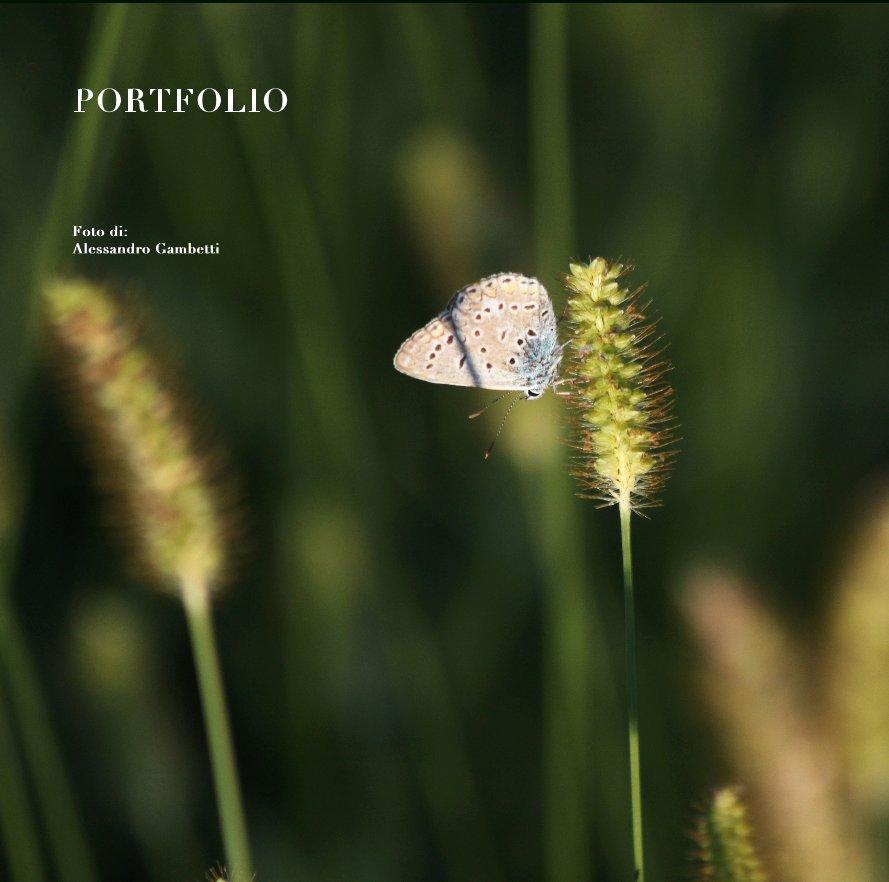 View PORTFOLIO by Alessandro Gambetti