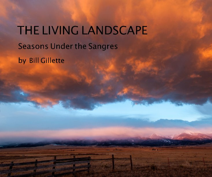 View THE LIVING LANDSCAPE by Bill Gillette