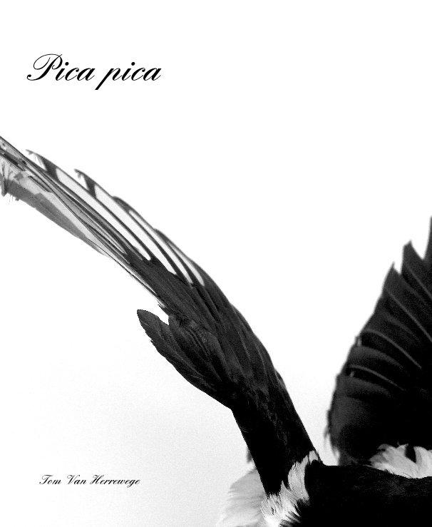 View Pica pica by Tom Van Herrewege